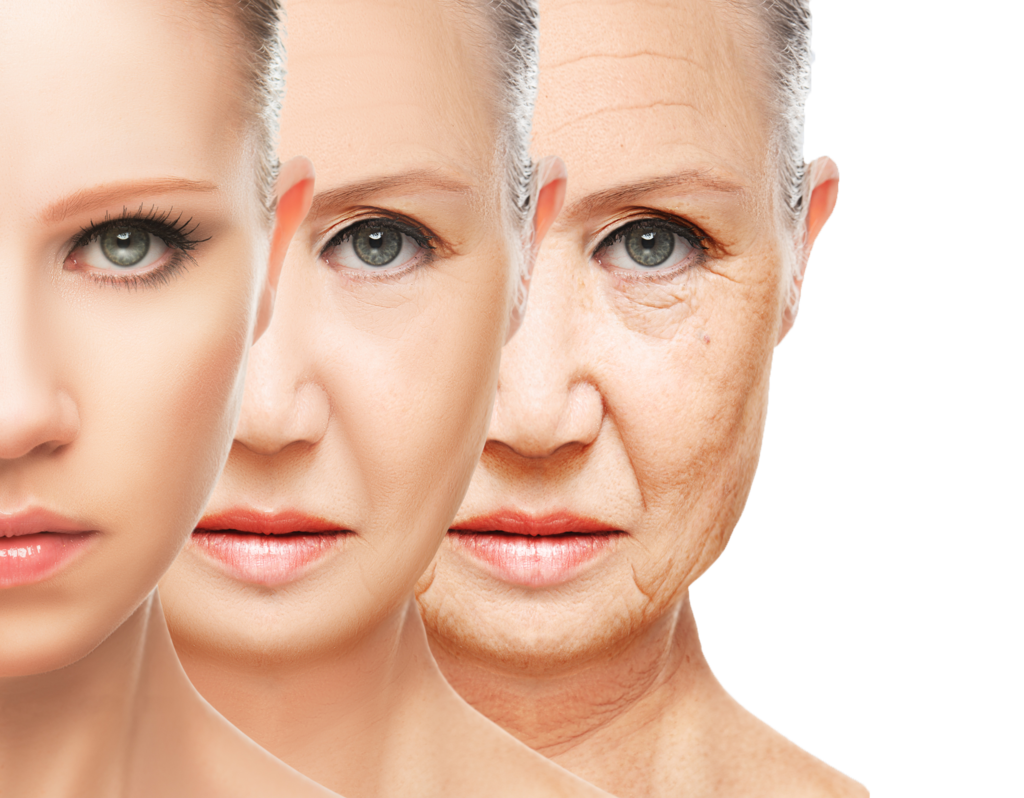 Scientists may have Finally Figured Out How to Reverse Aging in the Brain