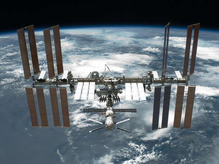 Three bacterial strains discovered on space station may help grow plants on Mars